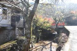somewhere in Miyajima