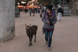 walk the deer