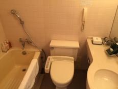 our bathroom at the RIHGA