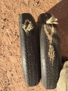 rip tires